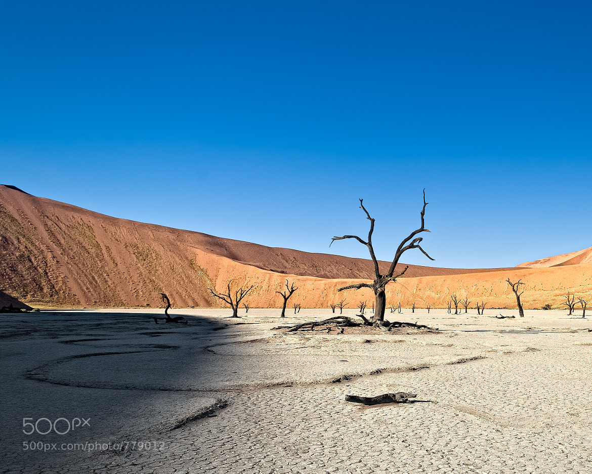 Photograph Dead Vlei by Kyle Anstey on 500px