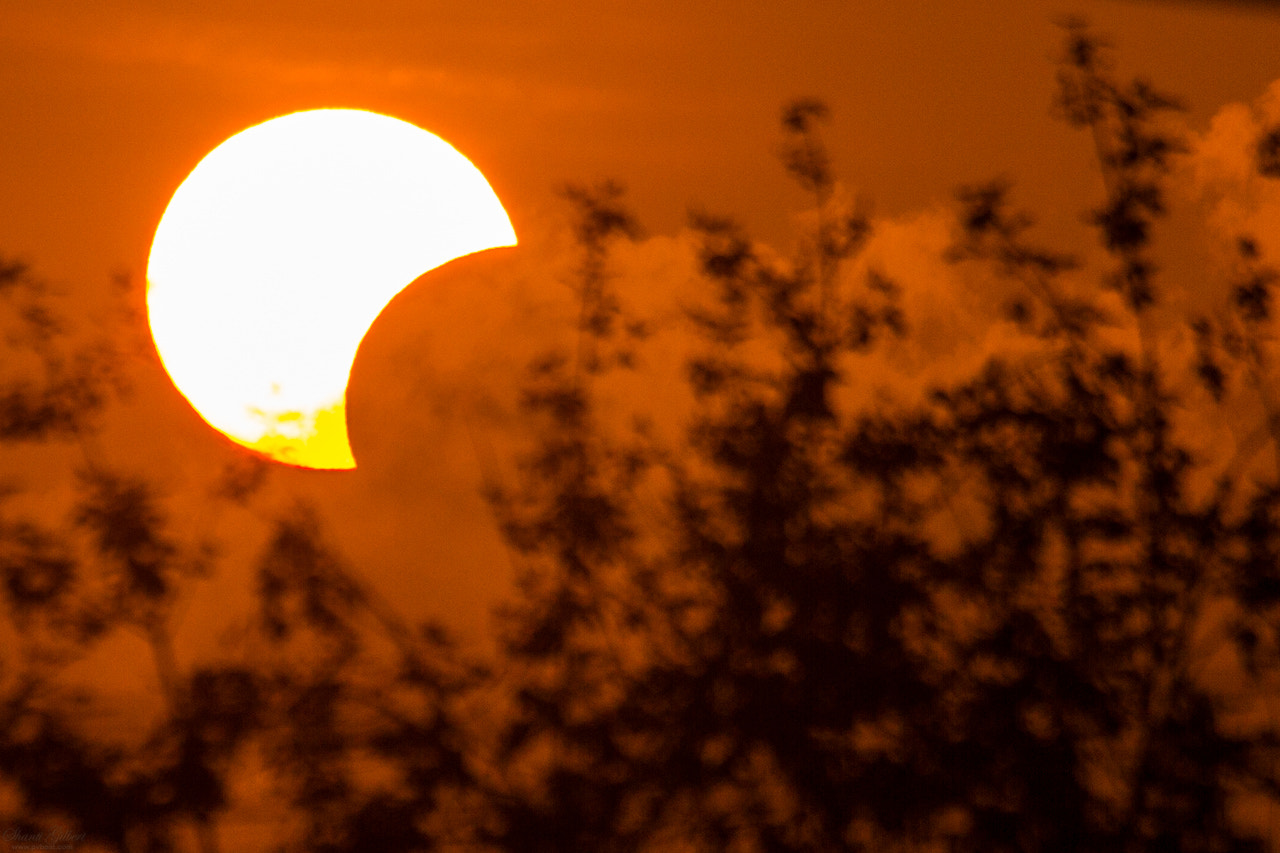 Photograph Solar Eclipse by Shanti Gilbert on 500px