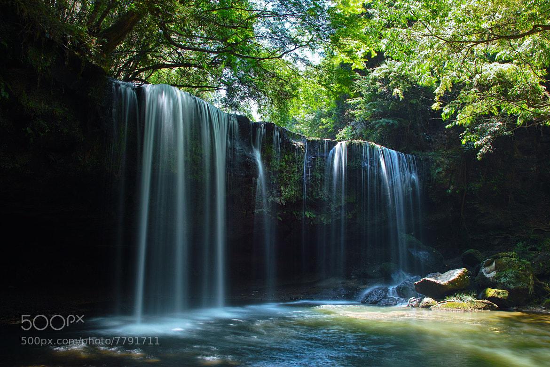 Photograph waterfalls in fresh green by Junya Hasegawa on 500px