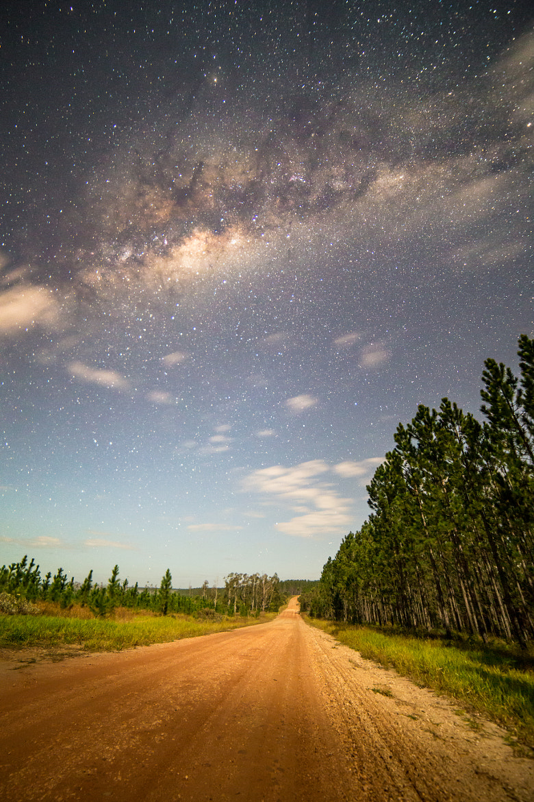 Photograph Plantation Skies by Matthew Post on 500px