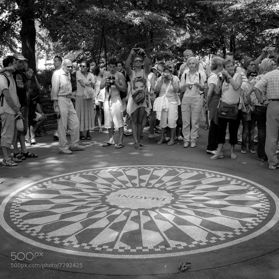 Strawberry field, Central Park, NYC  © Vitaliano Vitali
