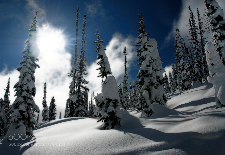 Photograph Marshmallow Morning by Robert Mullner on 500px