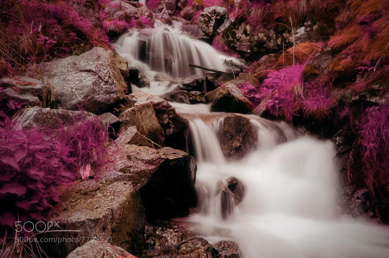 Photograph Fairy Waterfall by Nouran Abu Summaqa on 500px