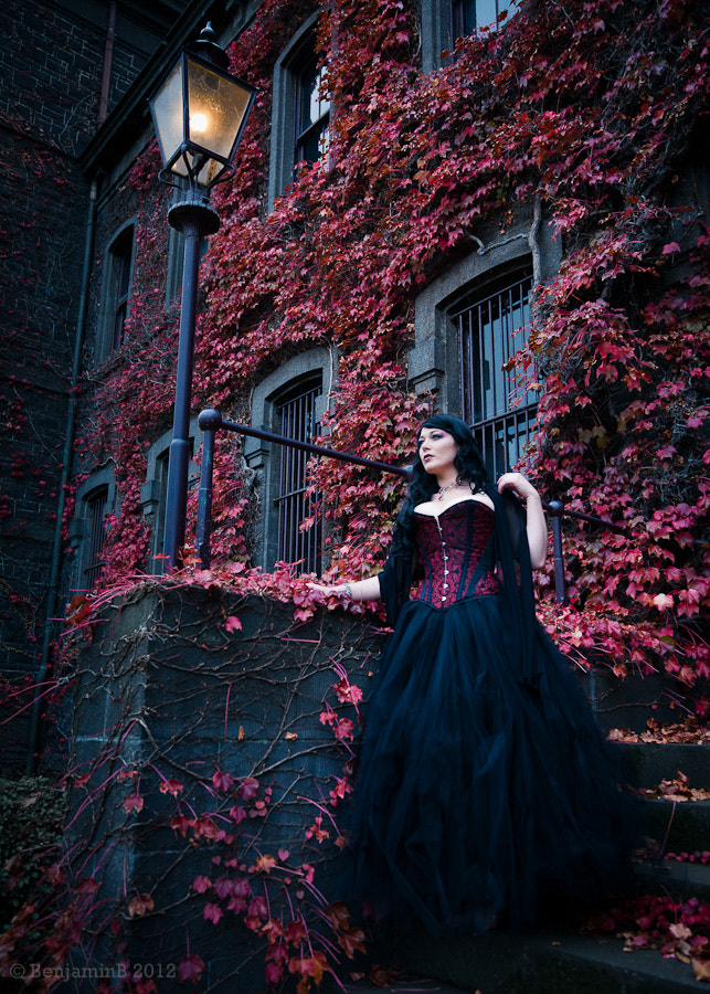 Photograph Gabrielle's Gothic Autumn 3 by Benjamin Brown on 500px