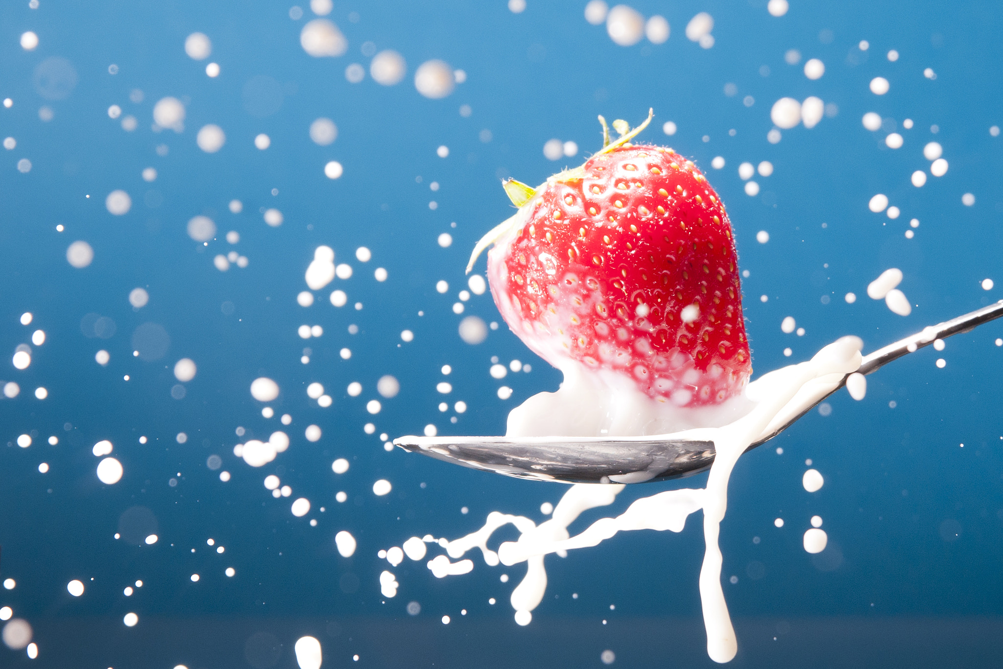 Photograph Strawberry Splash by Michiel Tersteege on 500px