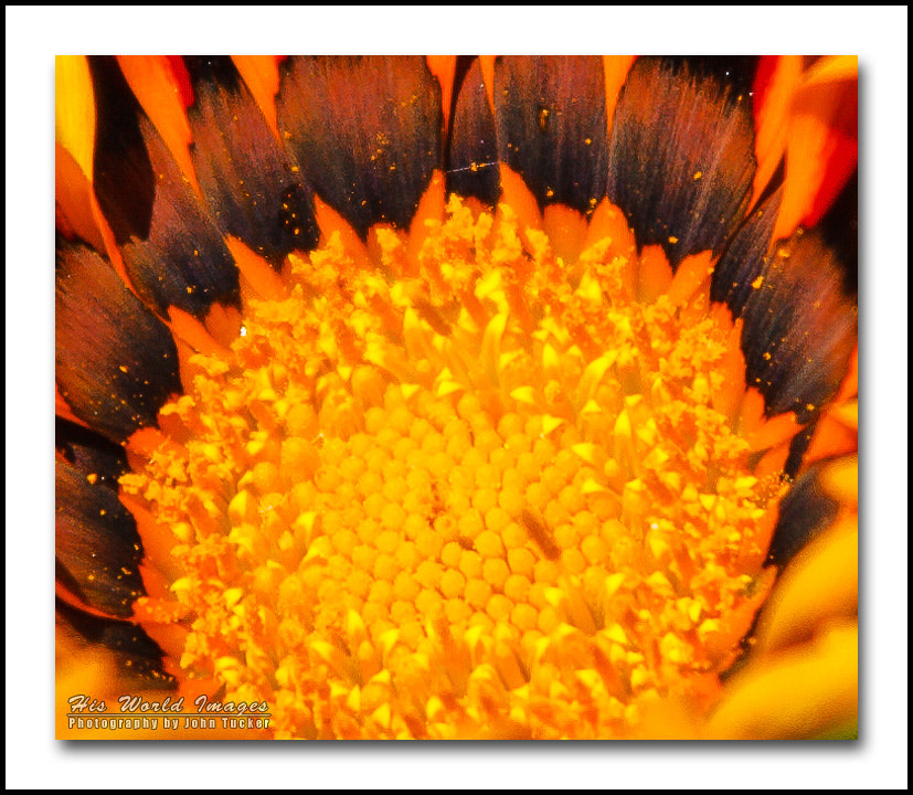 Photograph Fire in the Hole by John Tucker on 500px