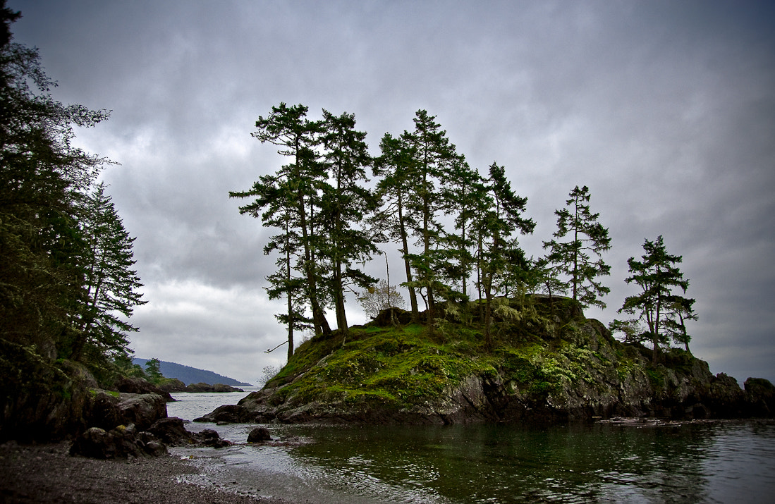 Photograph Anderson Cove by Juanita Bright on 500px