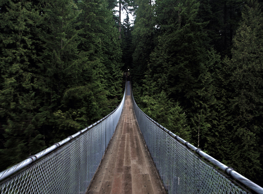 Capilano suspension bridge by Jeremy Sampson on 500px.com