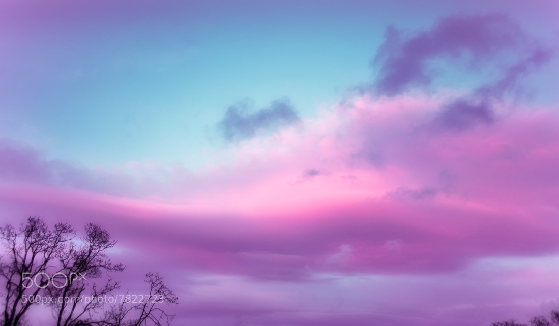 Photograph Keaolani - Softly dusk descends by Juanita Bright on 500px