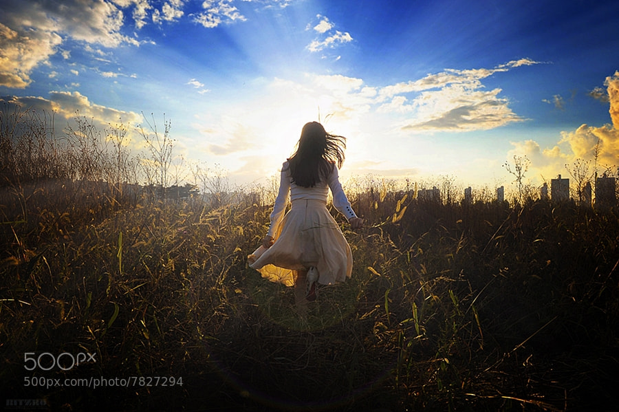 Photograph into the Sun by LightChaser .. on 500px