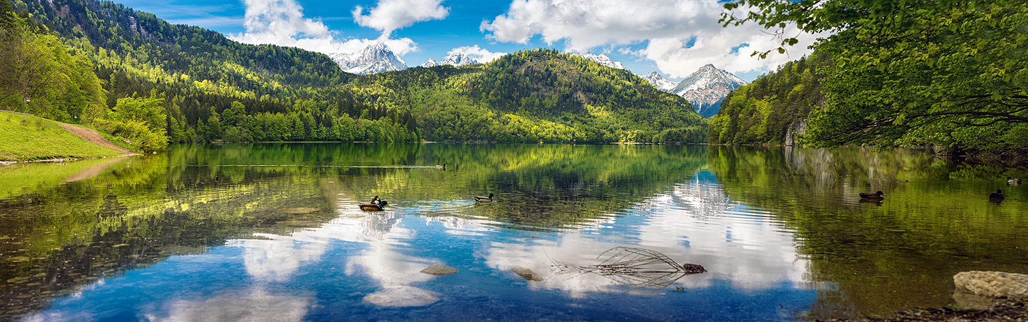 Photograph Alpsee - Neuschwanstein by Torsten Hufsky on 500px
