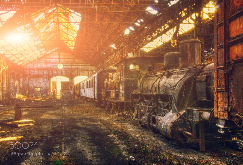 Photograph R.I.P. by Zoltán Koi on 500px