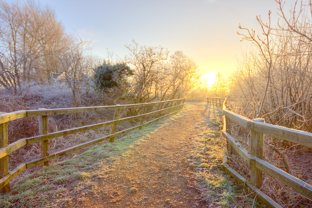 Photograph Morning sun by Karl Batchelor on 500px