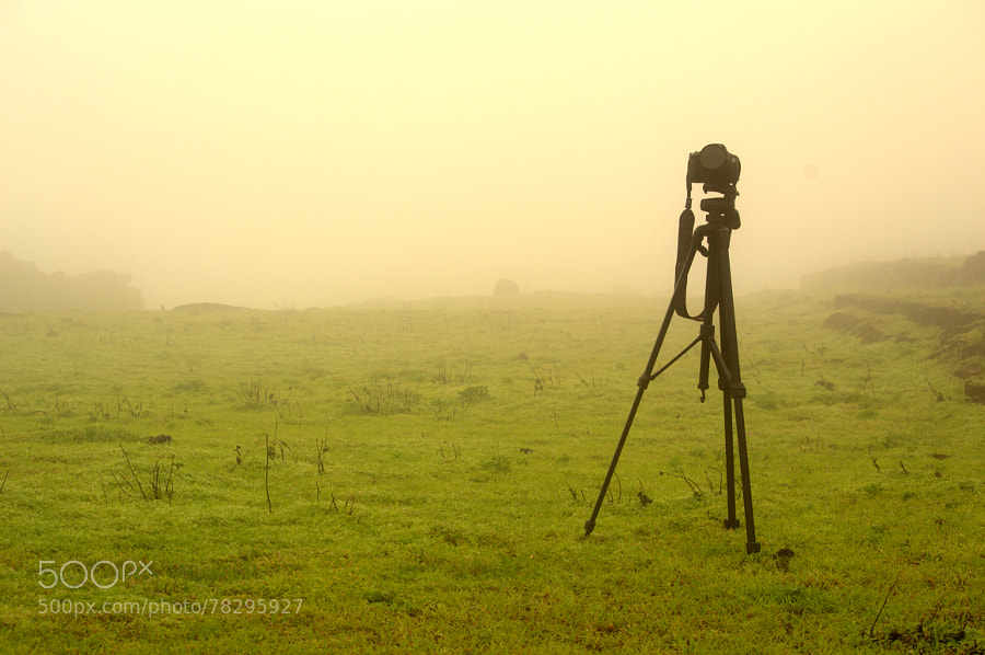 Photograph the vision by smit badiani on 500px