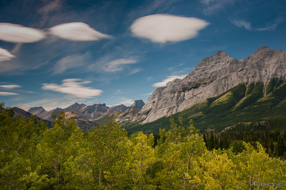 Photograph Lenticular dreams by Luke Casey on 500px
