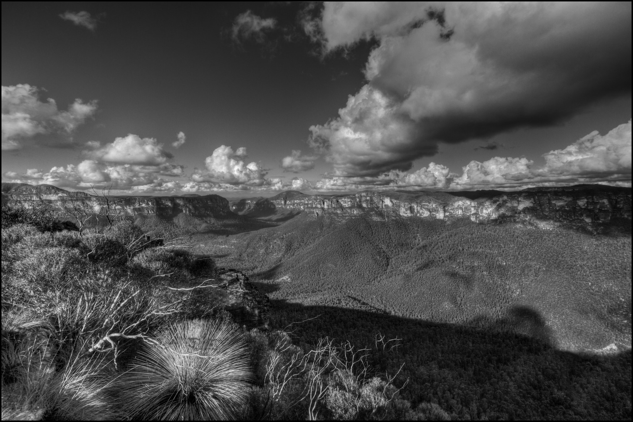 Photograph Blue Mountains in B&W by Steve Passlow on 500px