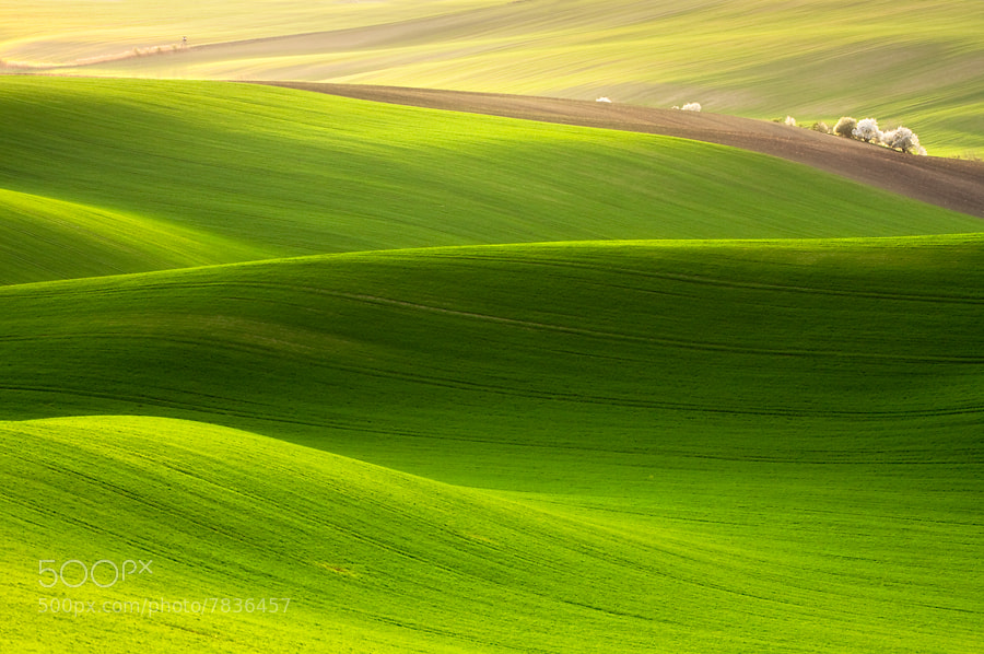 Photograph Spring time by Marcin Sobas on 500px