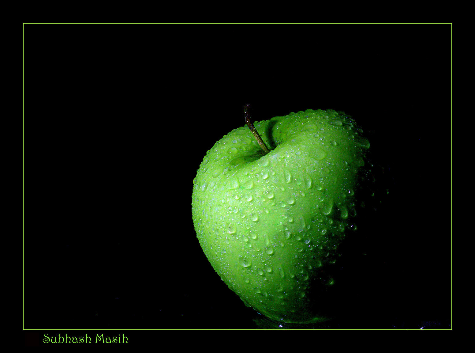 Photograph Lovely green by Subhash Masih on 500px