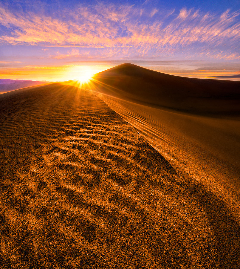 Photograph Starburst Sand Dune by Steve Perry on 500px