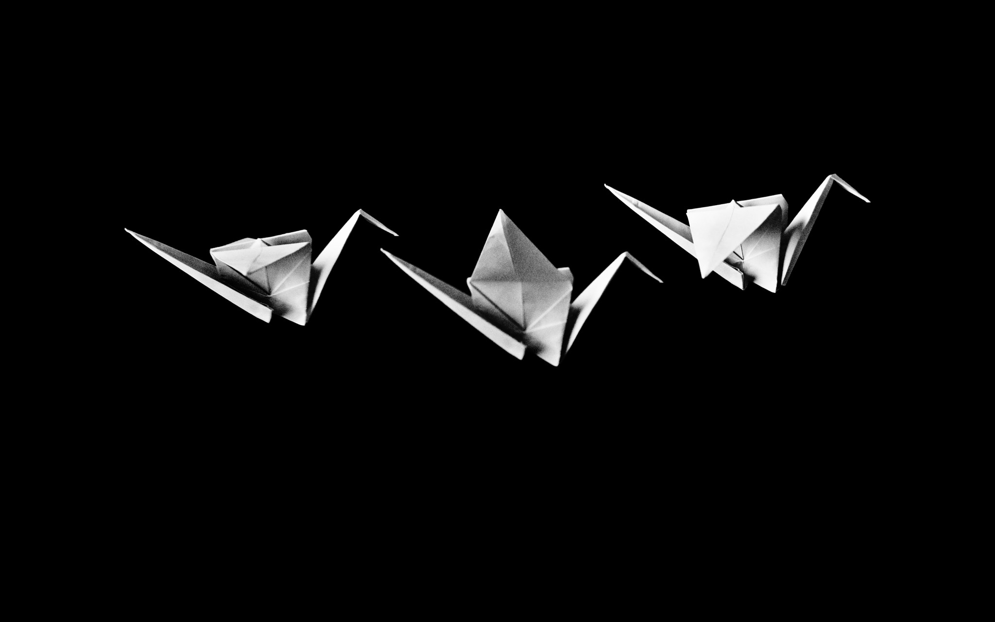 Photograph flight of the origami. by Josh Sam on 500px