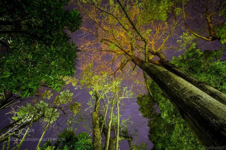 Photograph Beautiful Night by Rafael Brunheroti on 500px