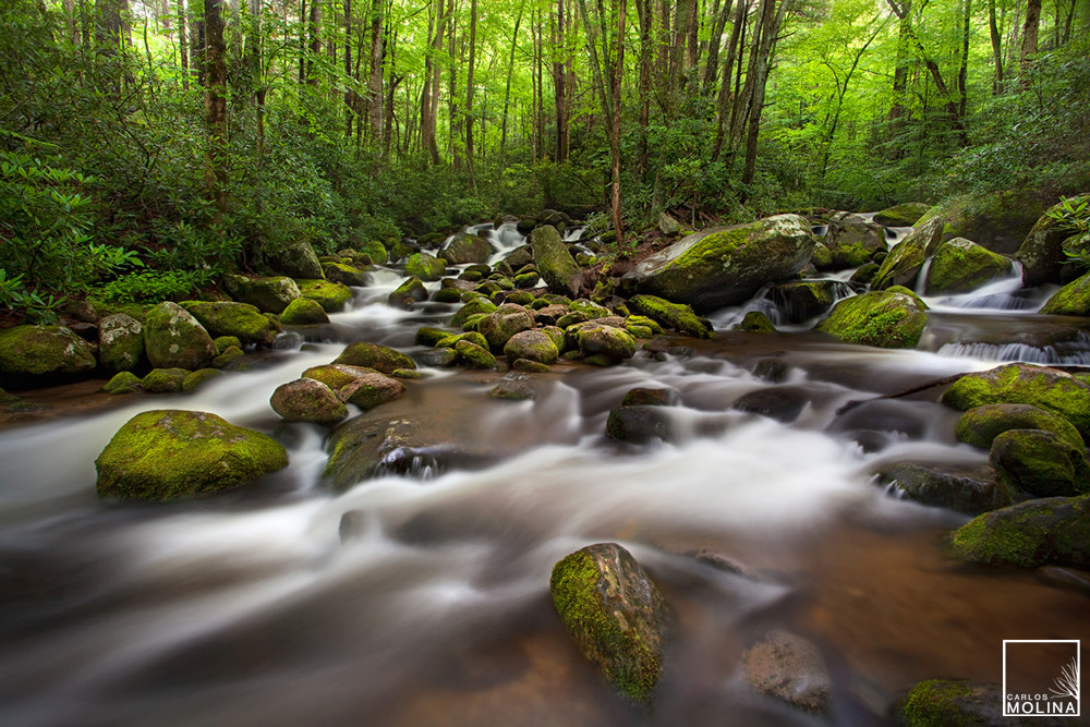 Photograph ROARING FORK by Carlos  Molina on 500px