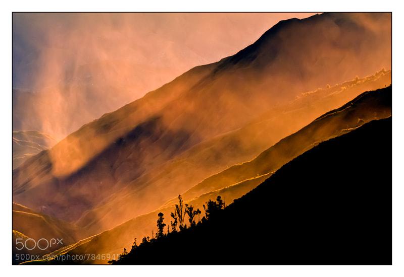 Photograph Fog by Fernando Salas on 500px