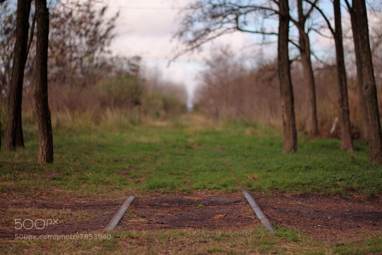 Photograph Haciendo el camino by Leonardo Mar on 500px