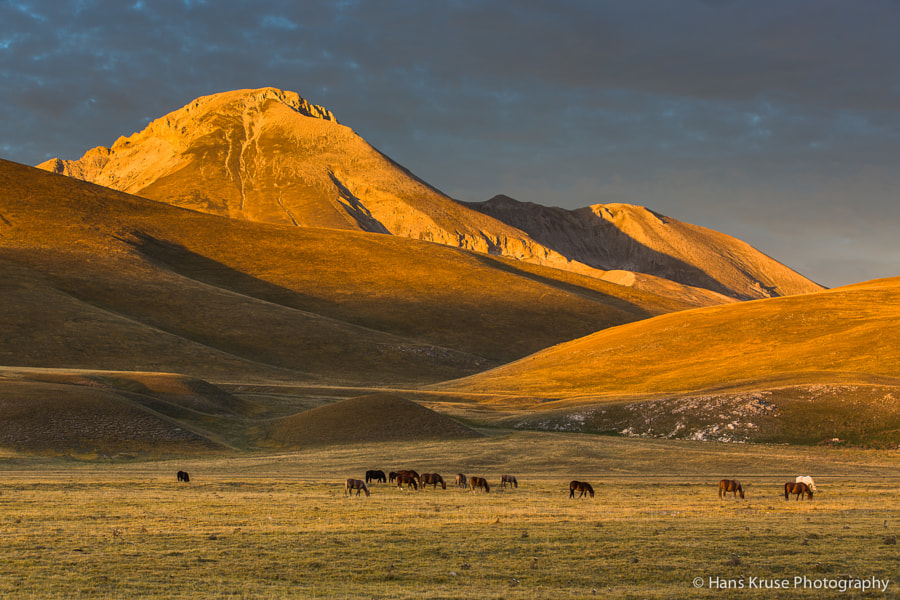 This photo was shot during the Abruzzo October 2013 photo workshop.