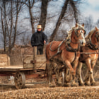 Постер, плакат: Winter Farming in Lancaster County