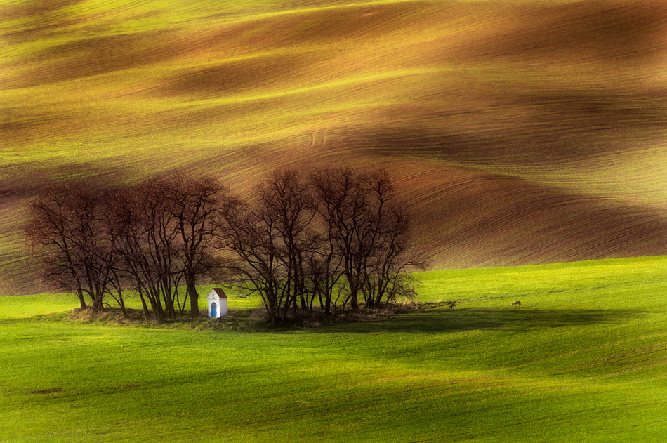 Photograph spring chapel by Piotr Krol on 500px