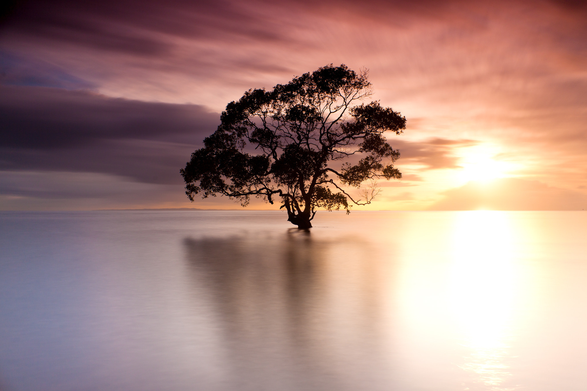 Photograph Isolation by Andrew Tallon on 500px