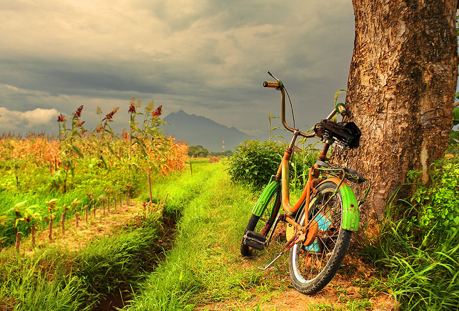 Photograph My Bicycle  by Sir  anta on 500px