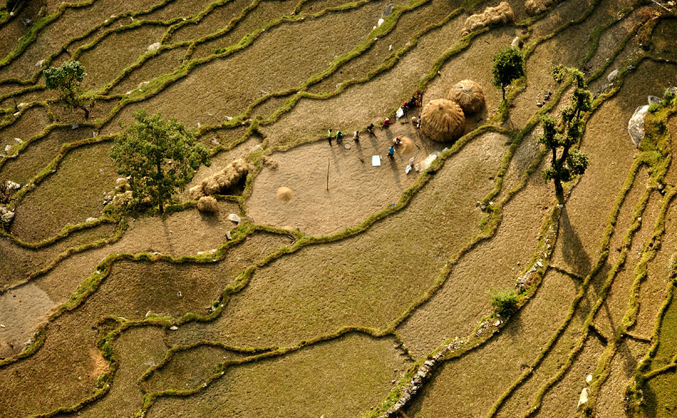 Photograph Rice terraces above Pokhara by Ori Ron on 500px