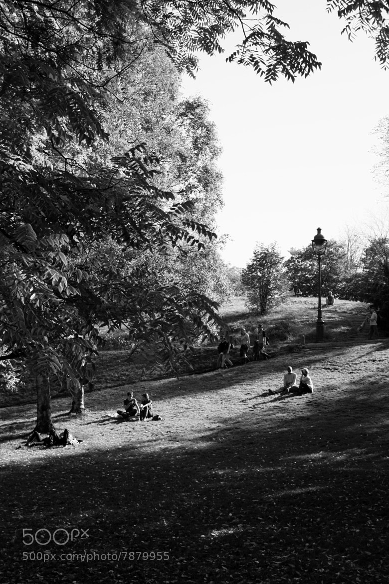 Photograph Buttes Chaumont by Guillaume CHANSON on 500px