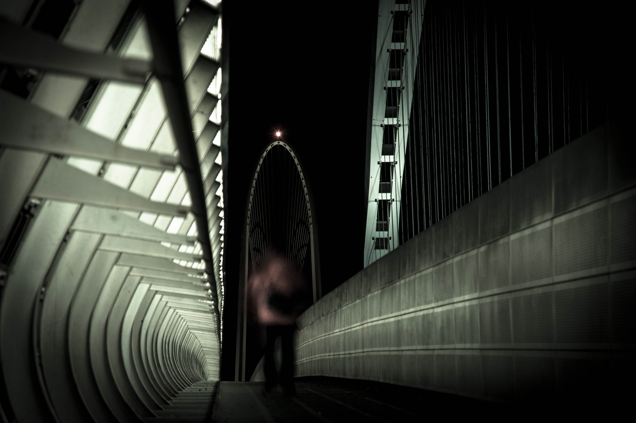 Photograph There is a ghost on Calatrava's Bridge by Michele Fornaciari on 500px