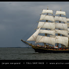 Tall Ship Race 2014