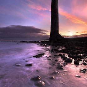 Chaine Tower Lighthouse by Stephen Emerson (stephenemerson)) on 500px.com