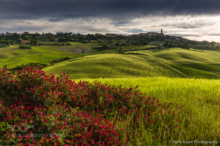This photo was during the Tuscany May 2014 photo workshop. There is a new photo workshop in May 2015 in Tuscany. See here http://www.hanskrusephotography.com/Hans-Kruse-Photo-Workshops/Tuscany-May-11-15-2015