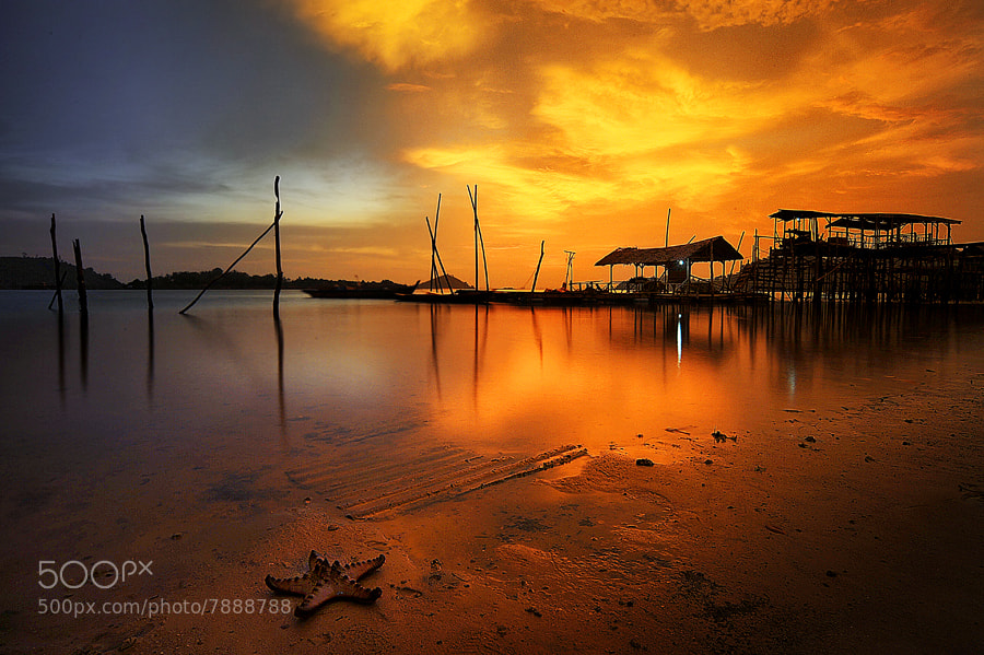 Photograph my or their Habitat by Echi Amenk Fariza on 500px