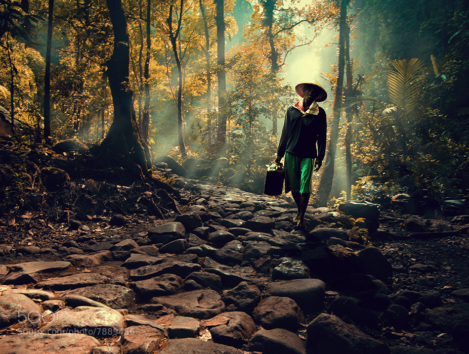 Photograph walk alone by abe less on 500px