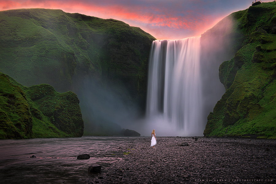 Photograph The Proposal by Ryan Buchanan on 500px