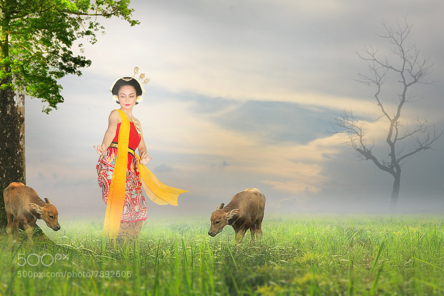 Photograph Dancing in the Morning by Eli Supriyatno on 500px