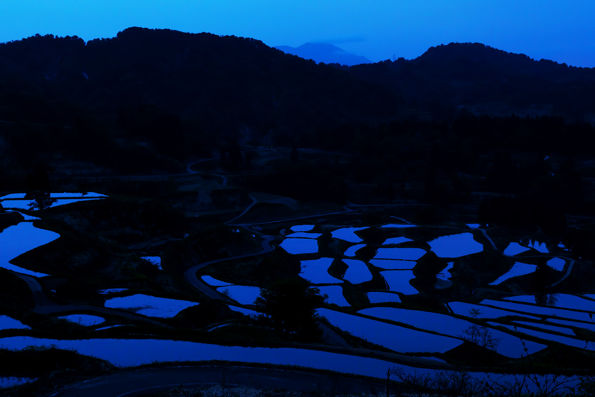 Photograph Rice terrace by MIYAMOTO Y on 500px