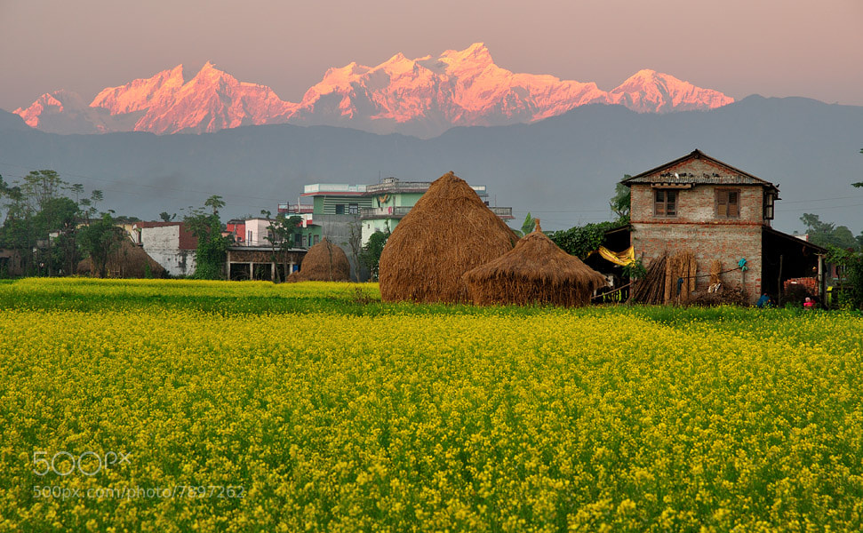 Photograph Bakuldhar village, south Nepal by Ori Ron on 500px