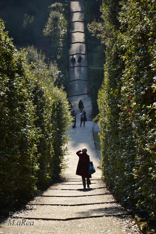 Photograph Sentiero che vai... by Martina Rio on 500px