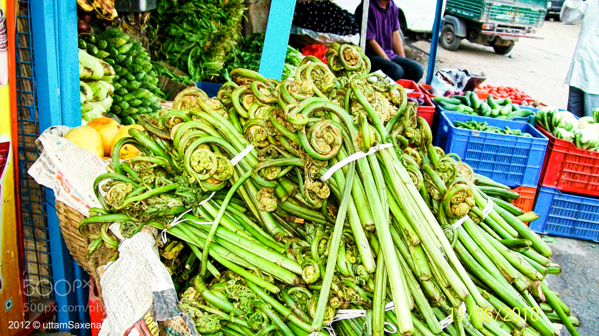 Photograph Vegetable Shop - Manali Town, India by Uttam Saxena on 500px