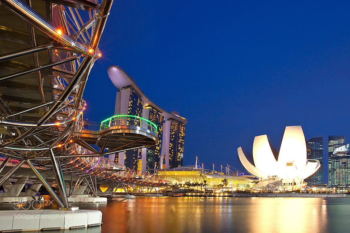 Photograph Singapore Wonders by Stephen Liono on 500px