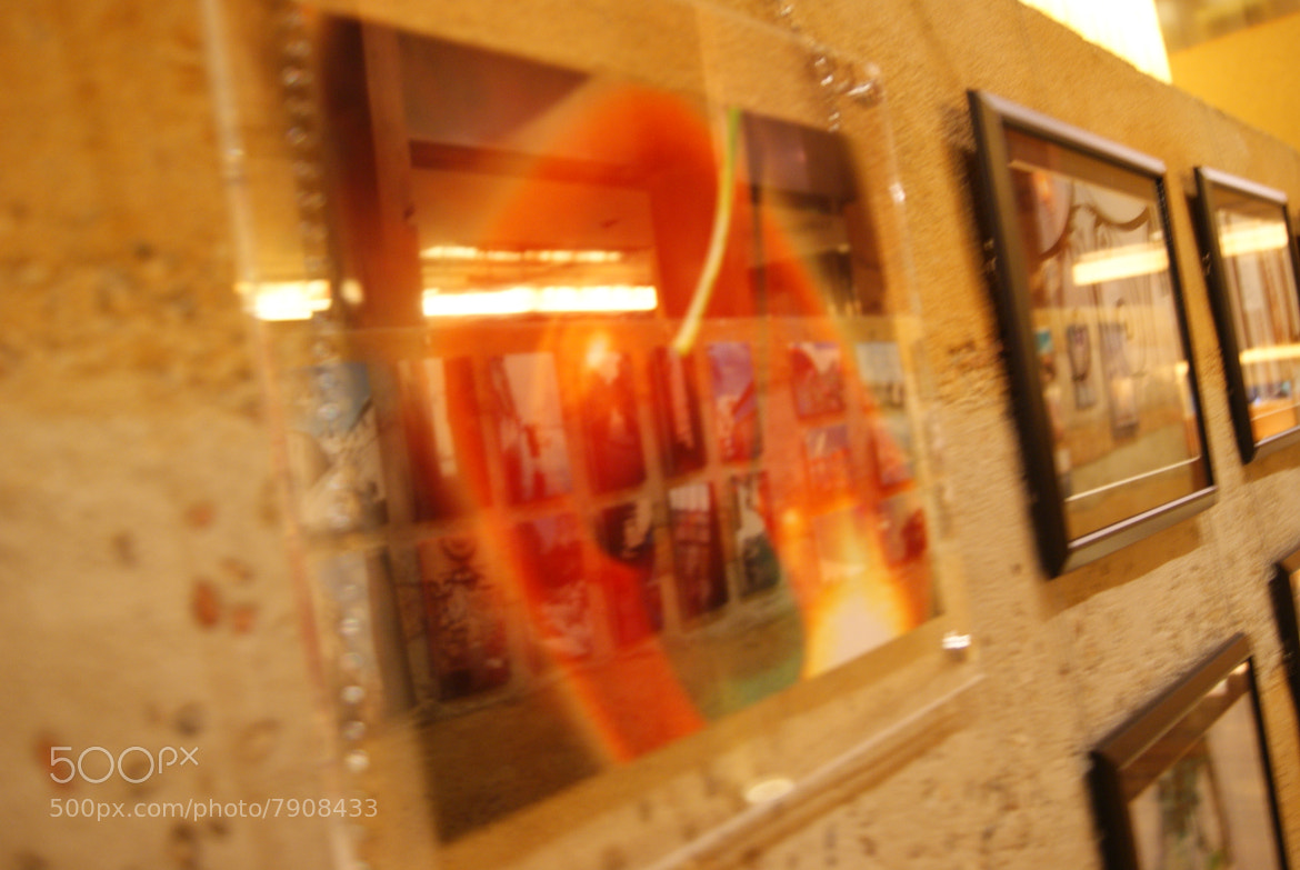 Photograph Exhibition Space by Naomi IB on 500px