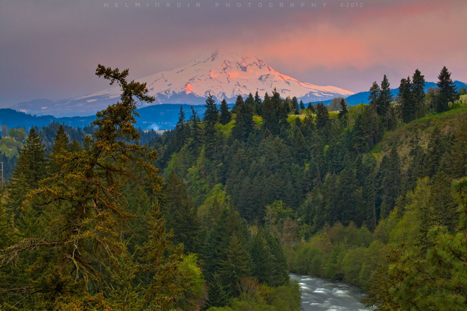 Photograph Mount Hood by Helminadia Ranford on 500px